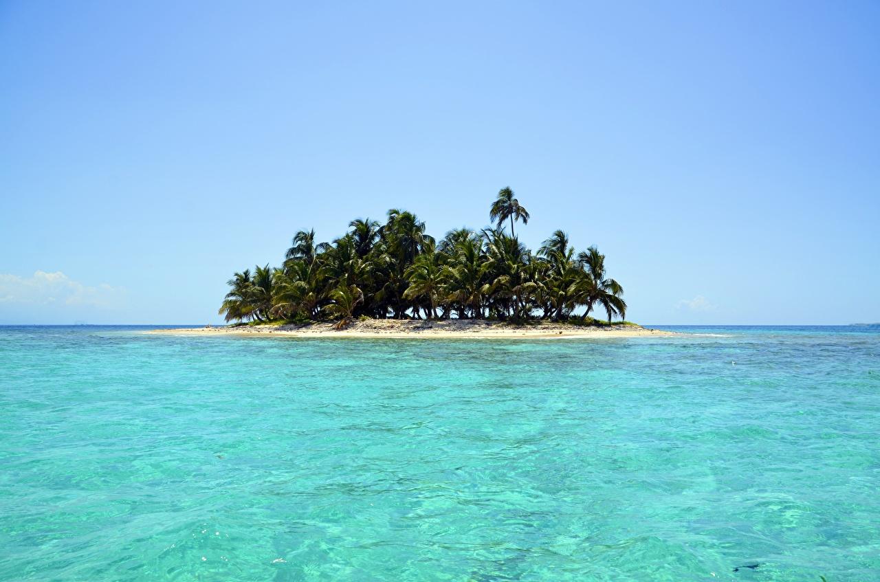 Фото Море Природа Остров Пальмы Тропики