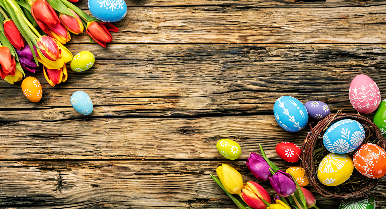 Картинка Пасха Разноцветные Яйца тюльпан Цветы Доски яиц яйцо яйцами Тюльпаны цветок