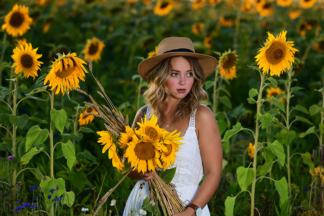 Картинка блондинок Selina Букеты Шляпа молодые женщины Цветы Подсолнечник платья блондинки Блондинка букет шляпы шляпе девушка Девушки молодая женщина цветок Подсолнухи Платье