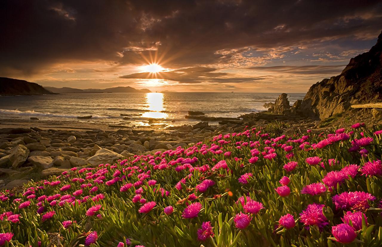 Фотография Солнце Природа Рассветы и закаты