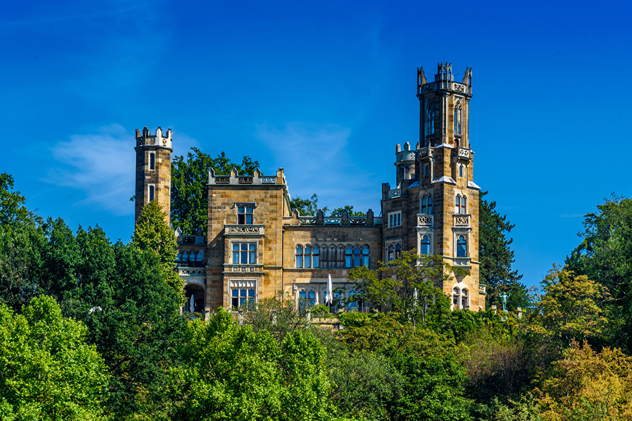 Фото Дрезден Германия Eckberg Castle Замки город дерева замок дерево Города Деревья деревьев