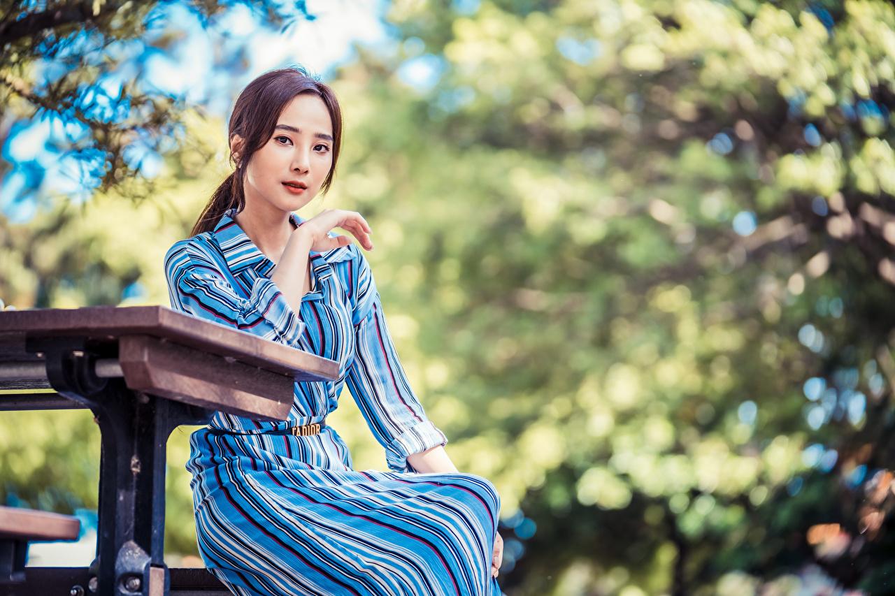 Фотографии Размытый фон позирует Девушки азиатка Сидит Взгляд боке Поза девушка молодая женщина молодые женщины Азиаты азиатки сидя сидящие смотрит смотрят