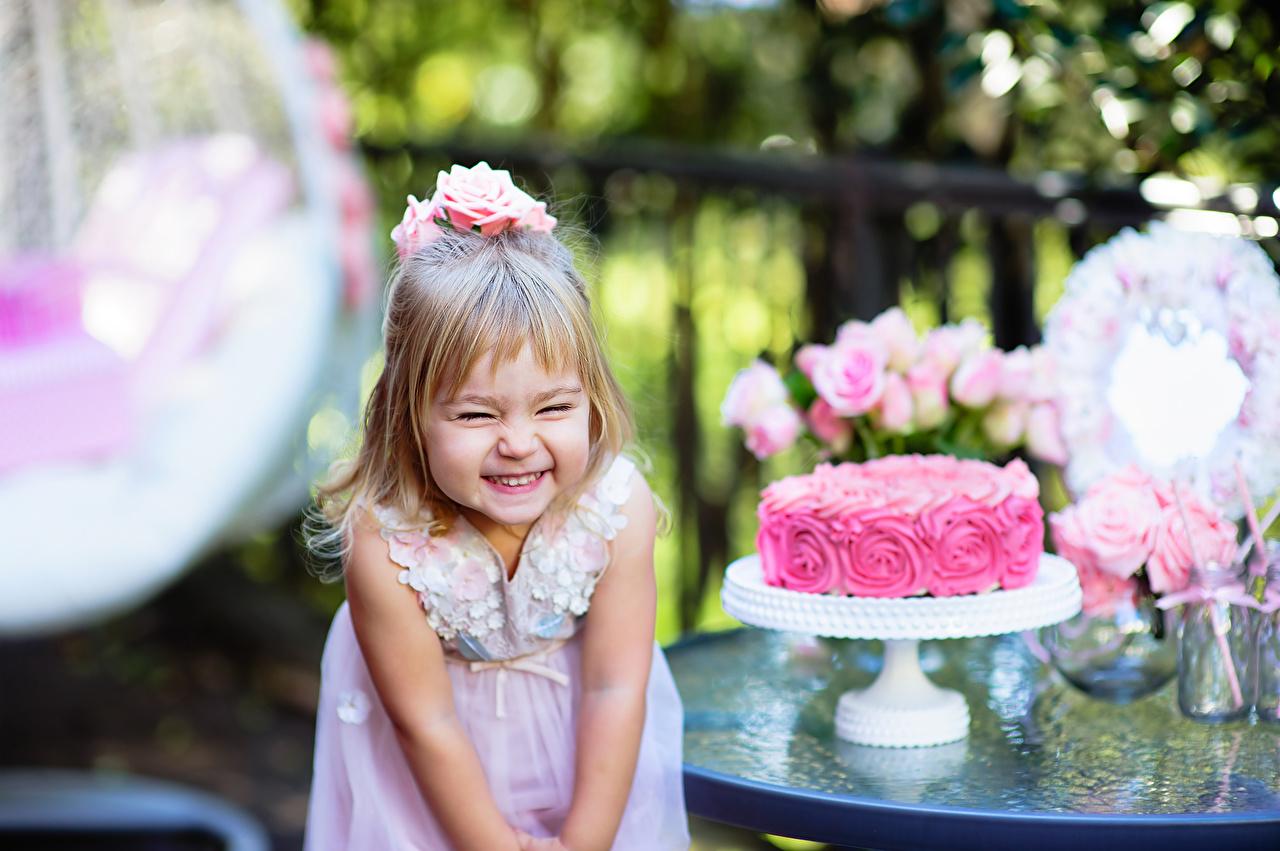 Фотографии Девочки День рождения Радость Дети Торты девочка счастье счастливые Ребёнок