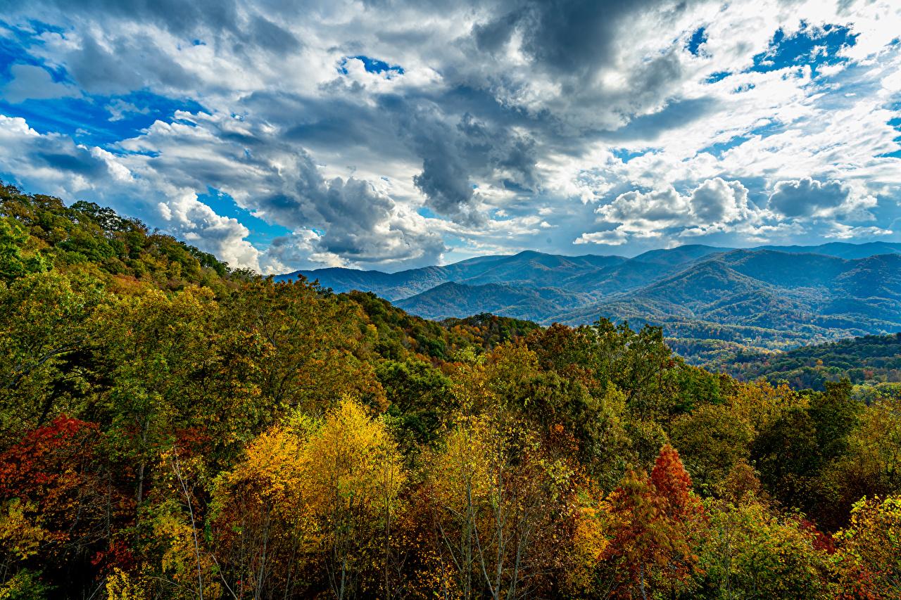 Фото Smoky Mountains HDRI гора осенние Природа Леса Небо облачно HDR Горы Осень лес Облака облако