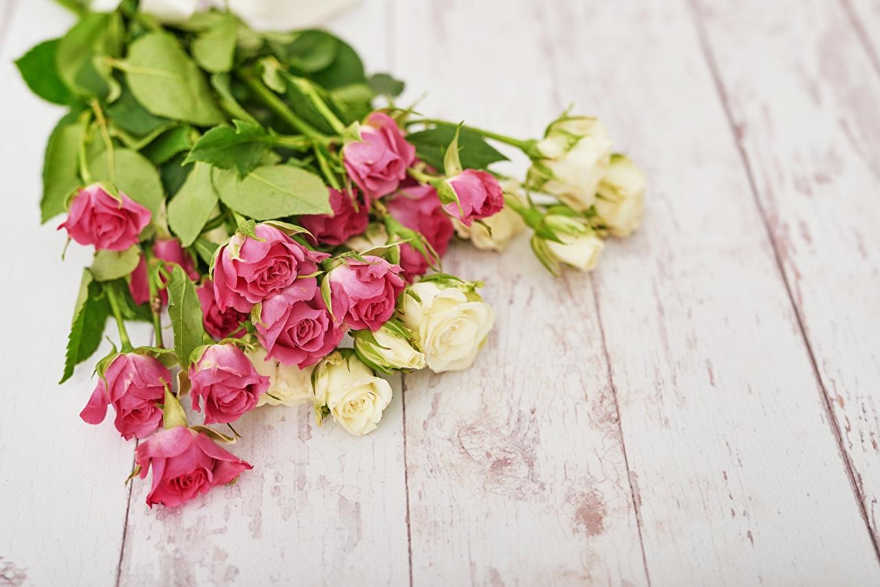 Картинки букет Розы Цветы Доски Букеты роза цветок