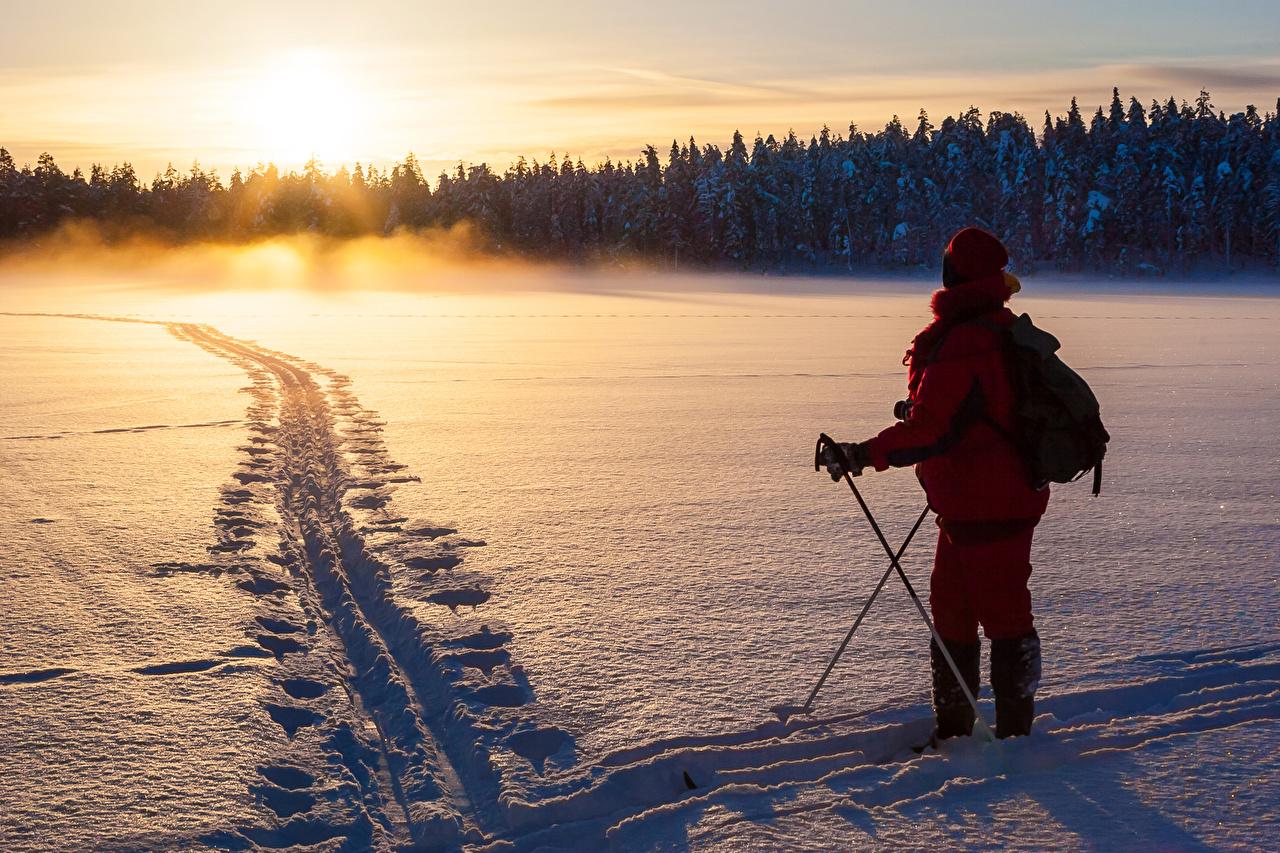 Фотографии зимние Природа лес снеге рассвет и закат Лыжный спорт Зима Снег Леса снегу снега Рассветы и закаты