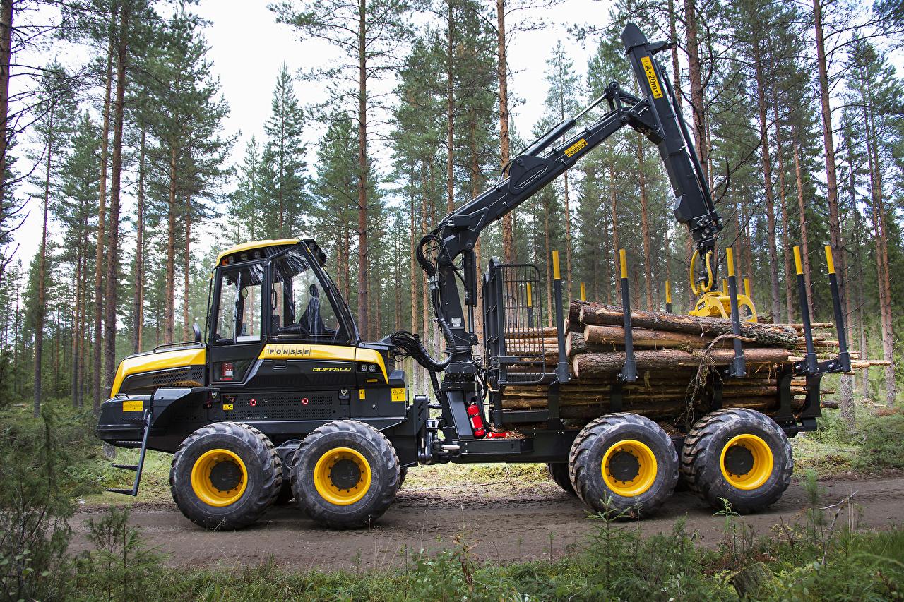 Обои для рабочего стола дерево 2014-17 Ponsse Buffalo Форвардер Сбоку дерева Деревья деревьев