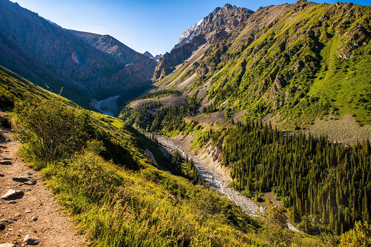 Картинка Ala Archa National Park, Kyrgyzstan Горы Ручей Природа парк Деревья гора ручеек Парки дерево дерева деревьев
