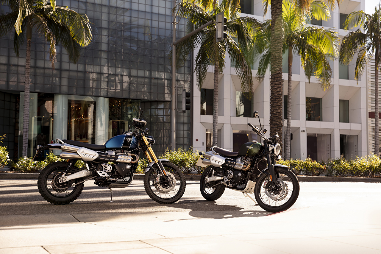 Картинка Triumph Scrambler 1200 XC, Scrambler 1200 XE вдвоем мотоцикл 2 две два Двое Мотоциклы