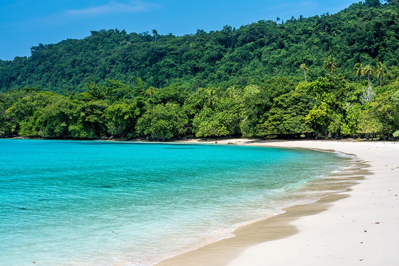 Фотографии Champagne Beach Vanuatu Пляж Море Природа Леса Тропики берег Побережье