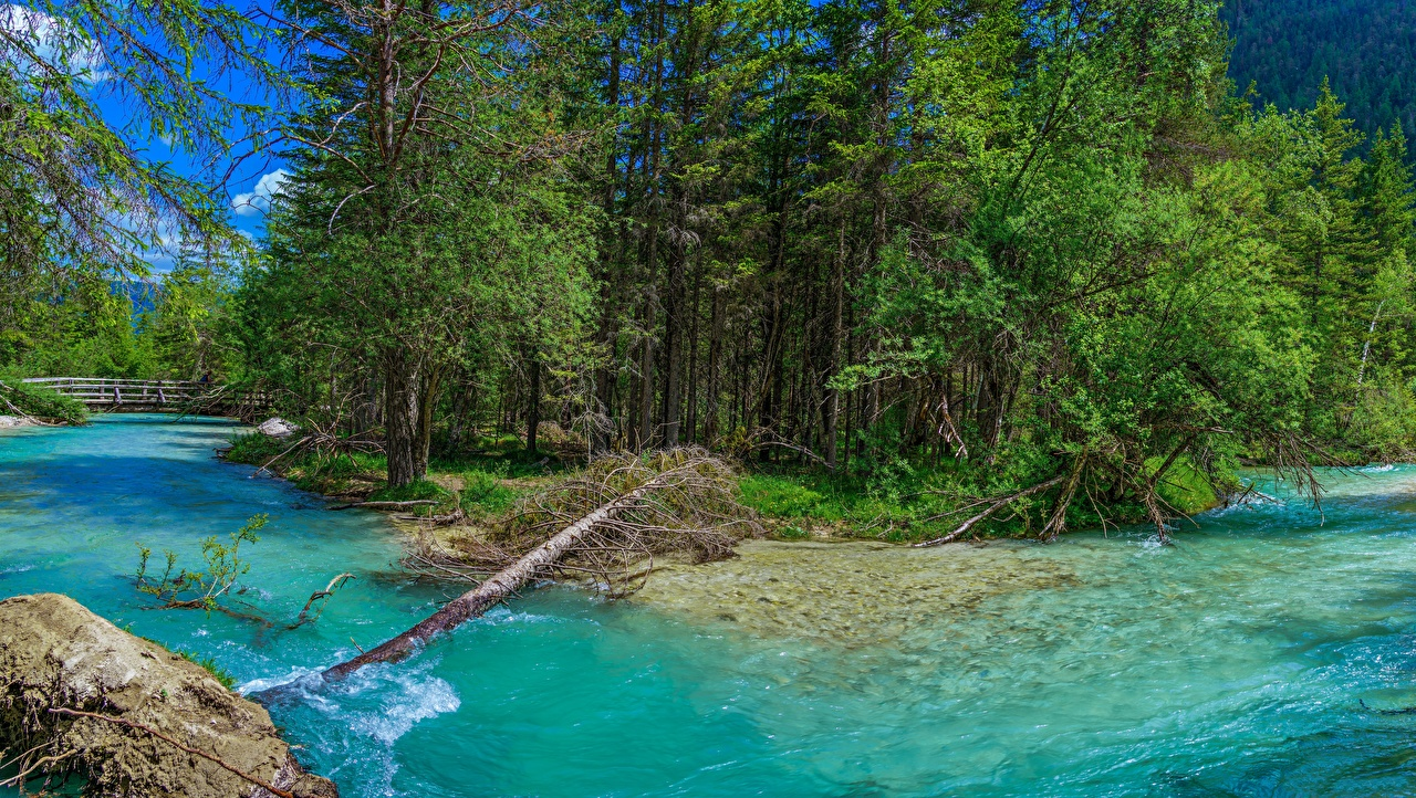 Фотография Италия Trentino-Alto Adige Природа река Деревья Реки речка дерево дерева деревьев