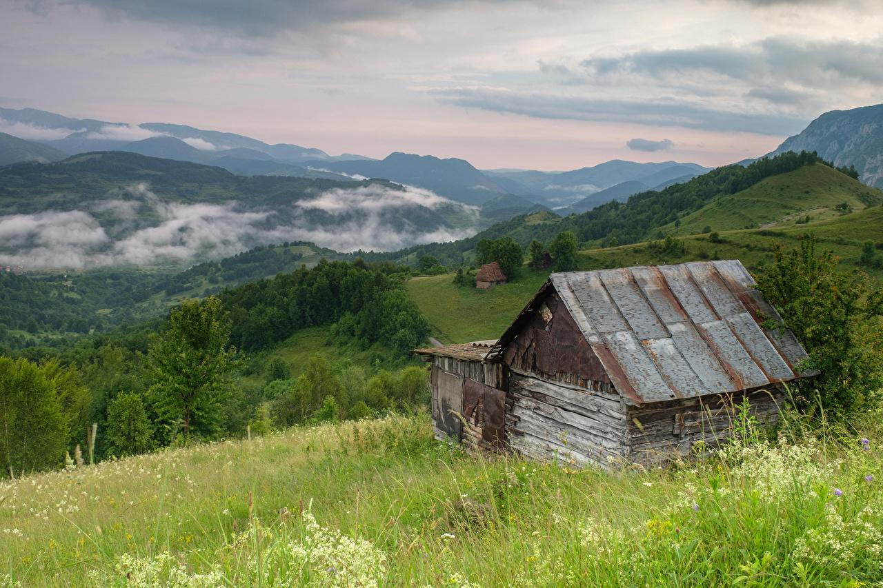 Картинки Румыния Sub Piatra Alba Горы Природа Леса траве гора лес Трава