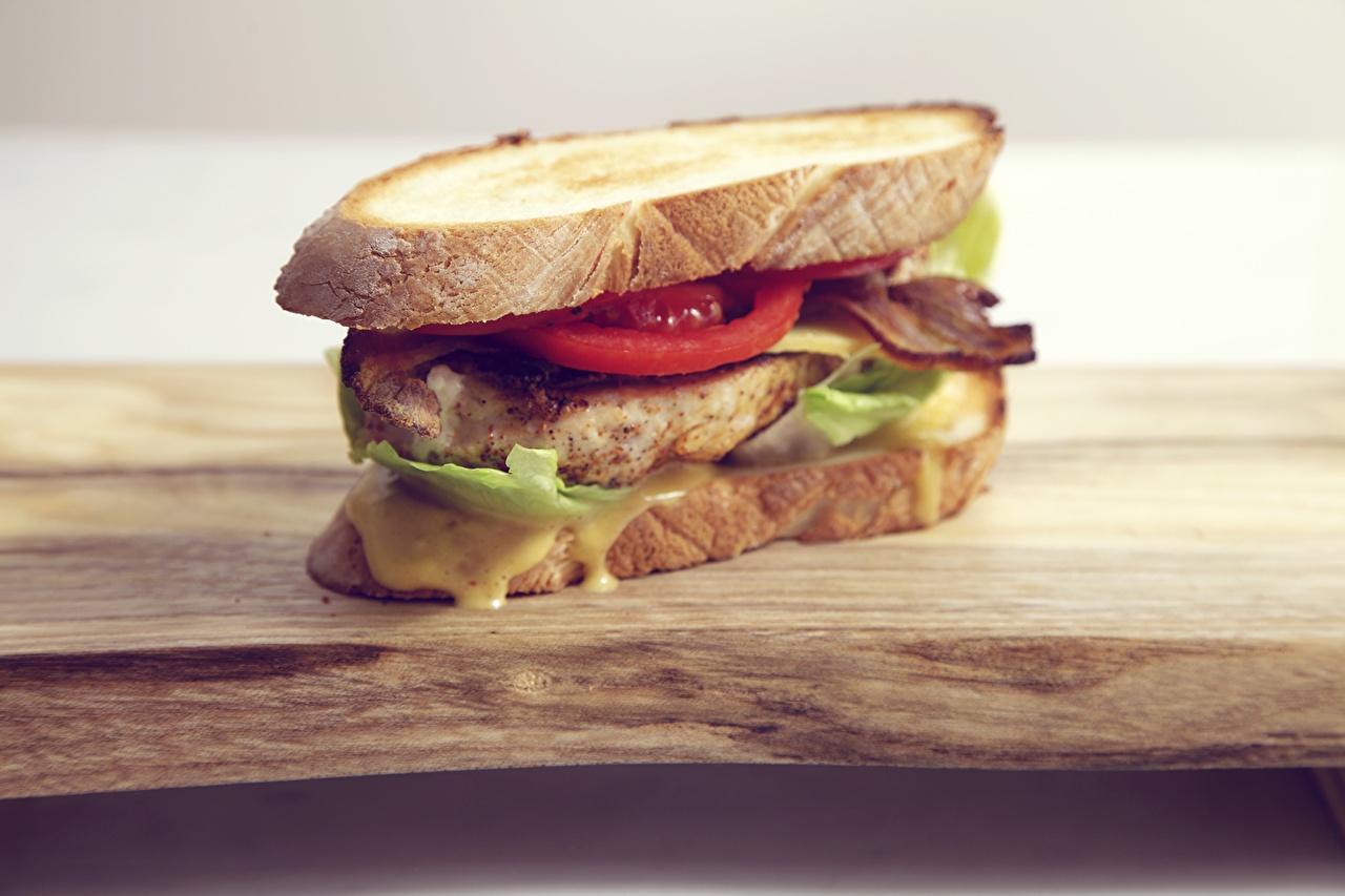 Фотография Пища Фастфуд Бутерброды Сэндвич Еда Продукты питания бутерброд Быстрое питание