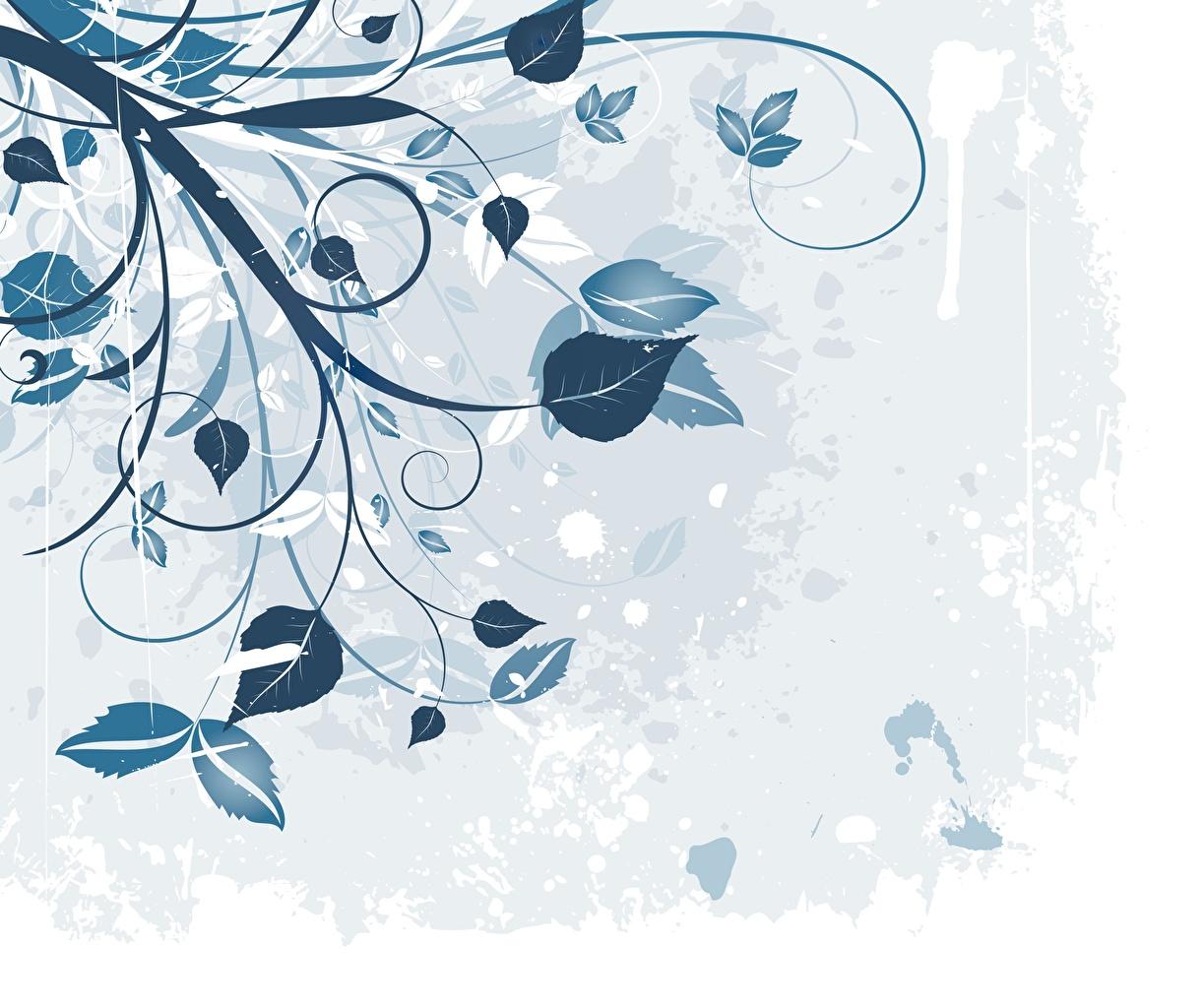 Фотографии Листья Текстура Растения лист Листва
