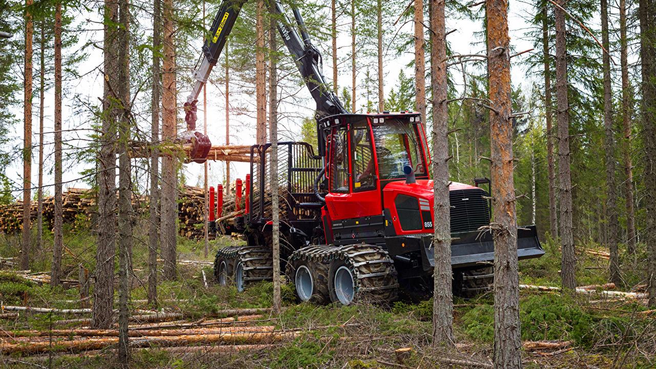 Фото Форвардер 2016-17 Komatsu 855 Красный лес Ствол дерева красная красные красных Леса