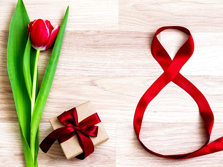 Обои для рабочего стола Международный женский день Красный Тюльпаны цветок Подарки бантики Праздники 8 марта красных красные красная тюльпан Цветы подарок подарков бант Бантик