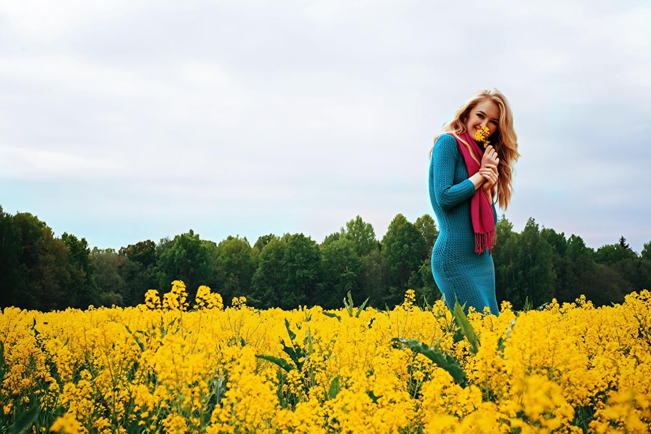 Картинка Блондинка шарфе Улыбка Рапс девушка Поля платья блондинки блондинок Шарф шарфом улыбается Девушки молодая женщина молодые женщины Платье