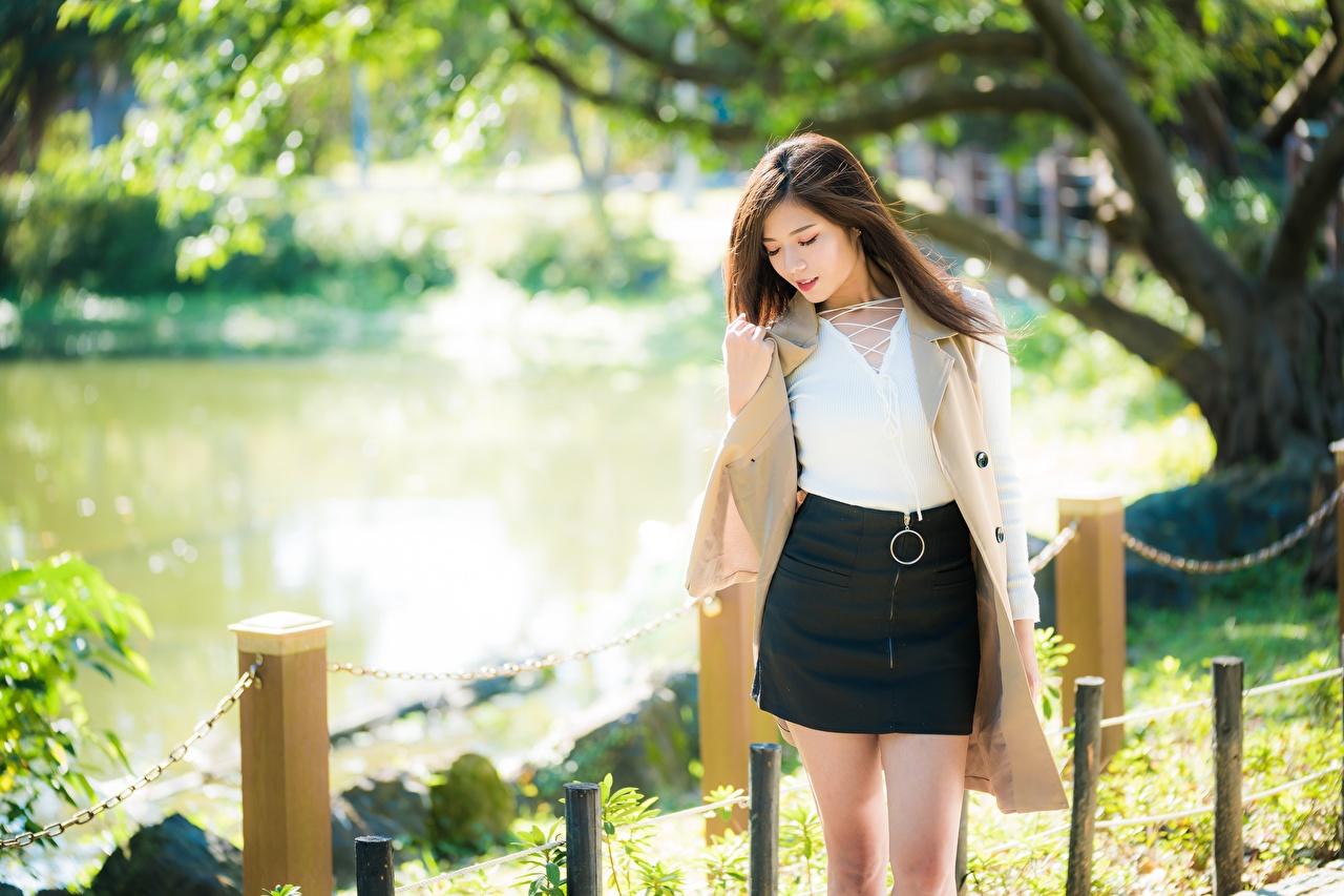 Картинки Юбка Шатенка Размытый фон девушка азиатки юбке юбки шатенки боке Девушки молодые женщины молодая женщина Азиаты азиатка