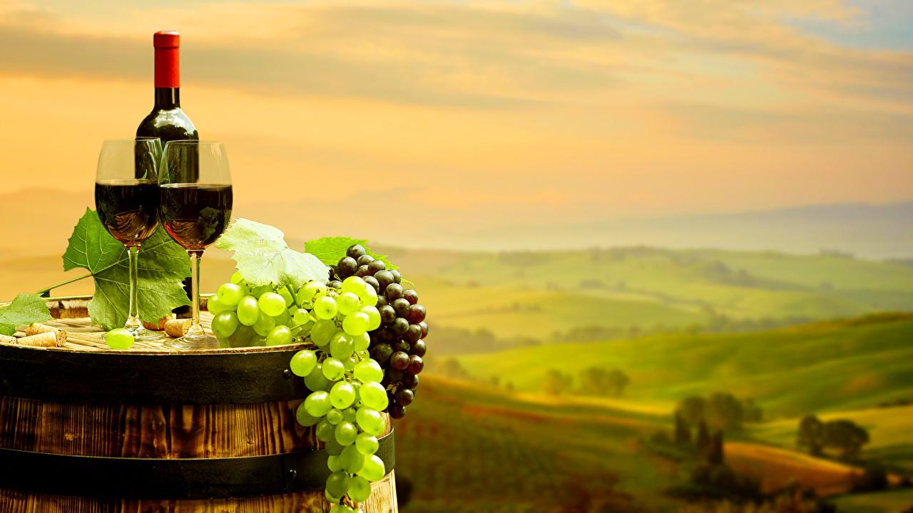 Фотографии Вино Бочка Виноград Еда бокал Бутылка Пища Бокалы бутылки Продукты питания