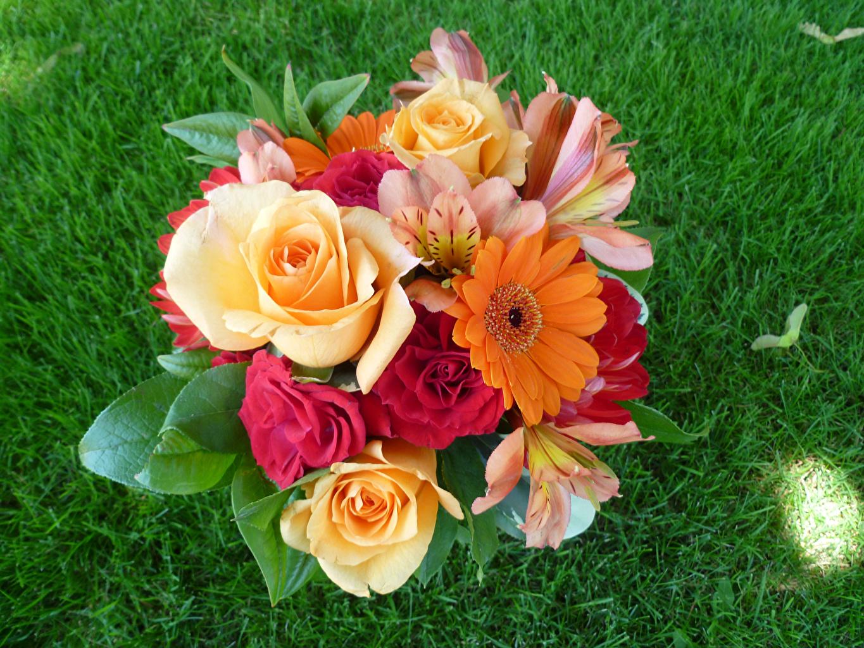 Розы букеты картинки фото