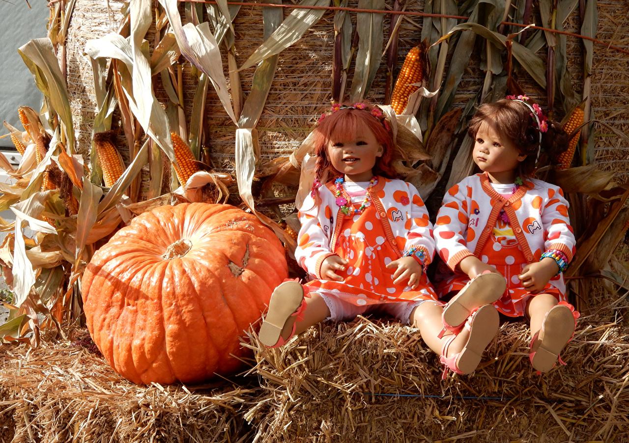 Фото Сено Парки Двое Grugapark Essen  Тыква Кукла Девочки Кукуруза Осень Природа сене парк 2 два две вдвоем куклы девочка осенние