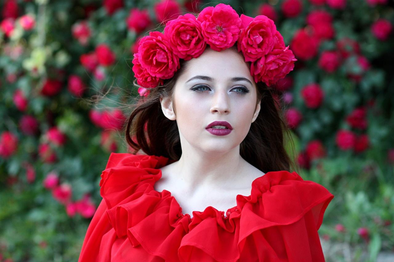 Фотография Розы Венок Девушки Красный Взгляд смотрит