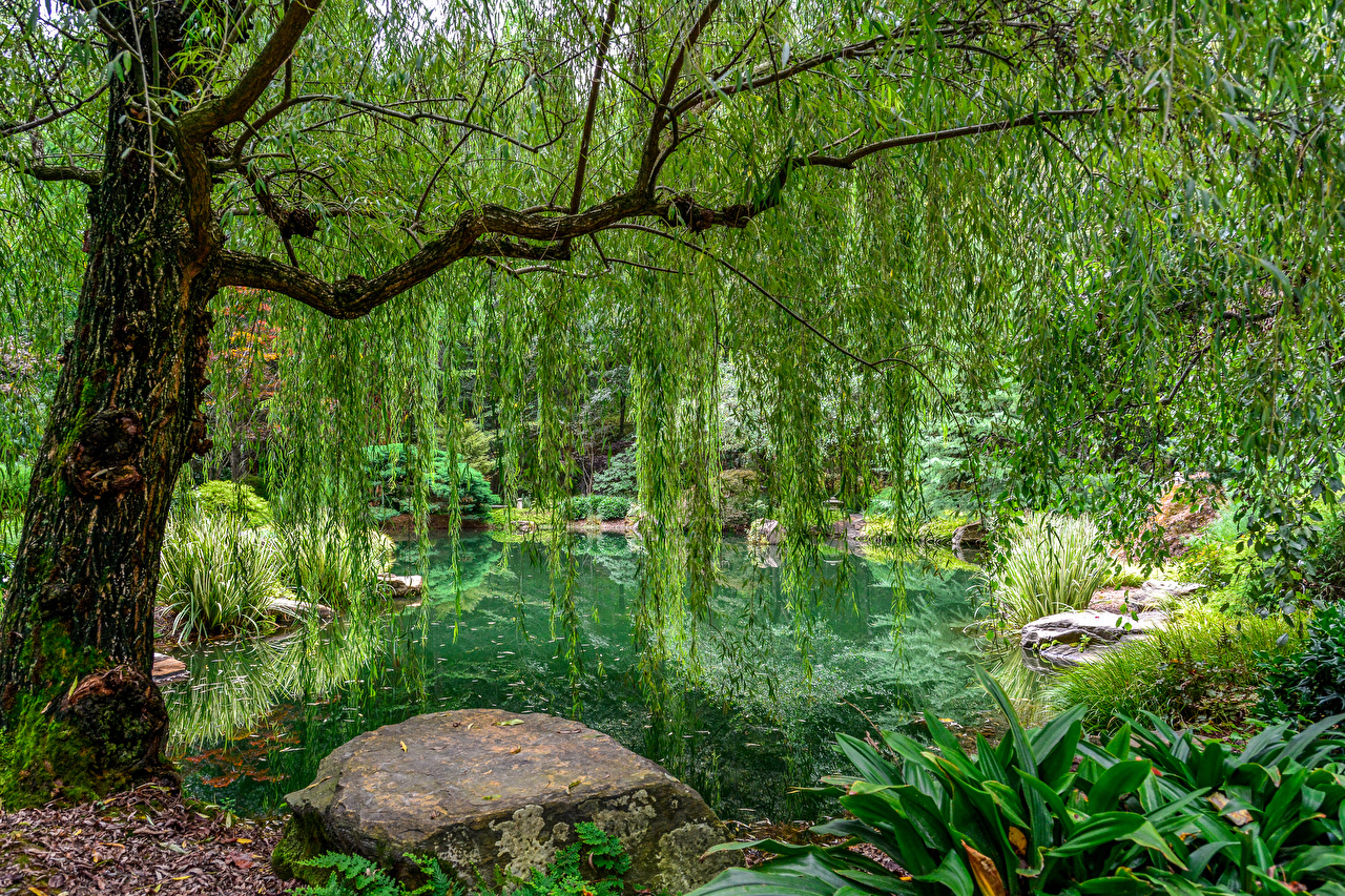 Фото США Gibbs Gardens Природа Пруд Парки Камни Деревья Дизайн штаты Камень