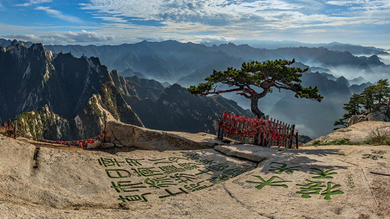 Картинка Китай Mount Hua Горы Природа дерево облако Иероглифы гора Облака дерева облачно Деревья деревьев