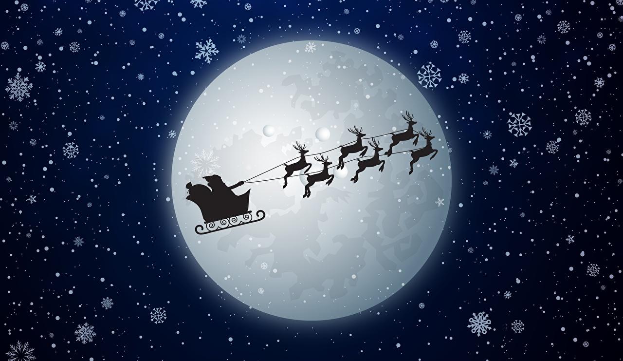 Картинка Олени Рождество санях силуэта снежинка Дед Мороз Луна Ночные летящий Новый год Сани Санки санках Силуэт силуэты Снежинки Санта-Клаус луны луной Ночь ночью летят Полет летит в ночи