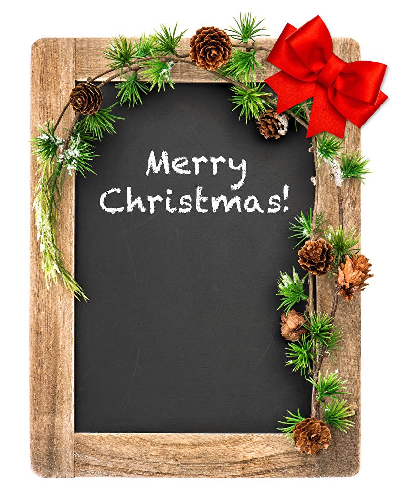 Фотография Новый год Английский Шишки ветвь Бантик Шаблон поздравительной открытки Белый фон Рождество Ветки