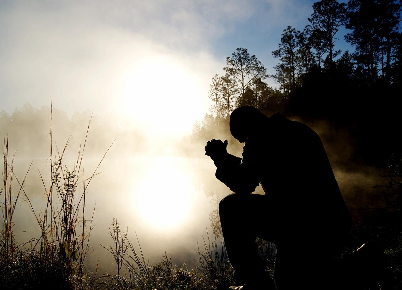 Фотографии Мужчины Силуэт тумана рассвет и закат сидя мужчина силуэты силуэта Туман тумане Рассветы и закаты Сидит сидящие