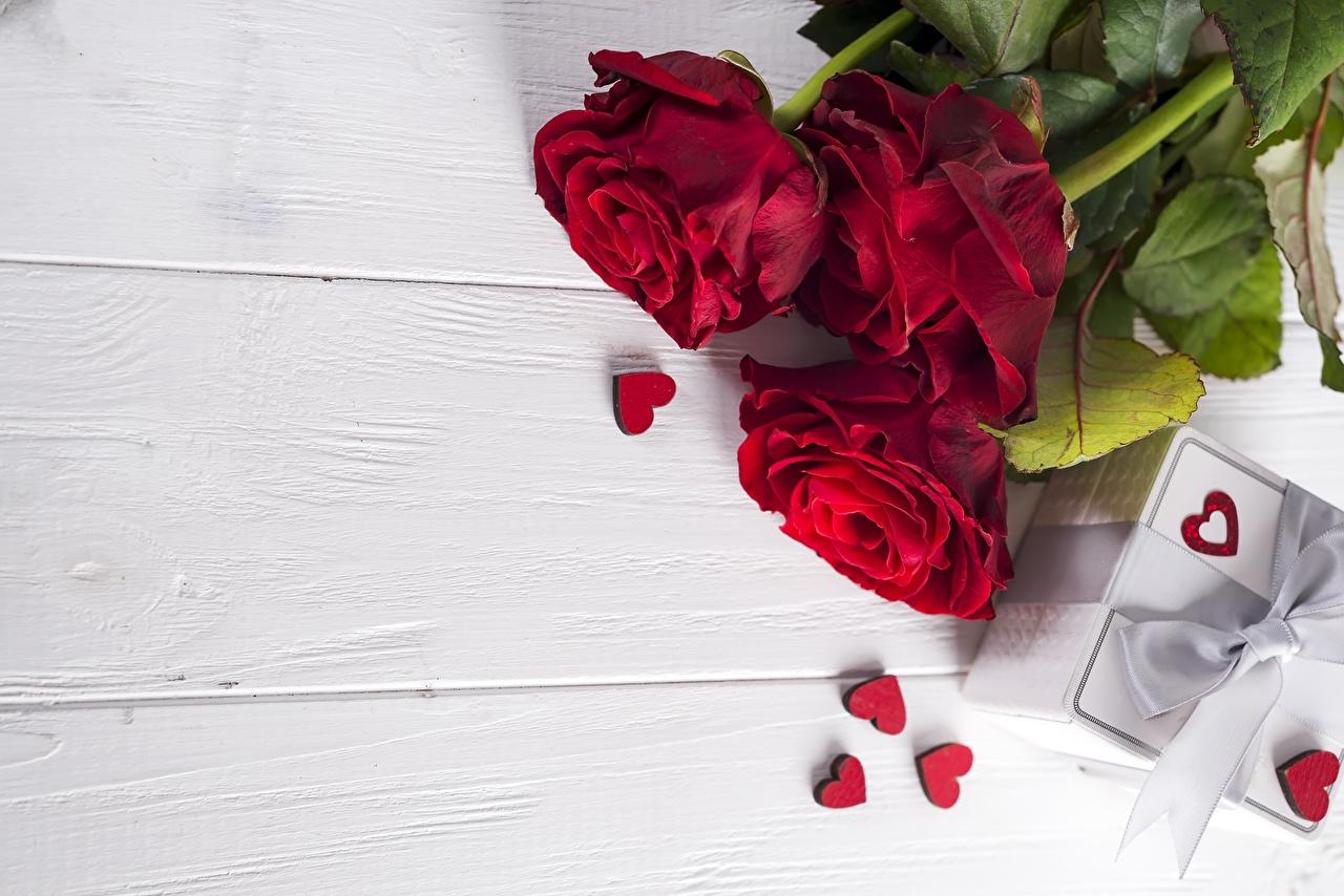 Фотографии День святого Валентина сердца роза Красный Цветы Шаблон поздравительной открытки Доски День всех влюблённых серце Сердце сердечко Розы красных красная красные цветок