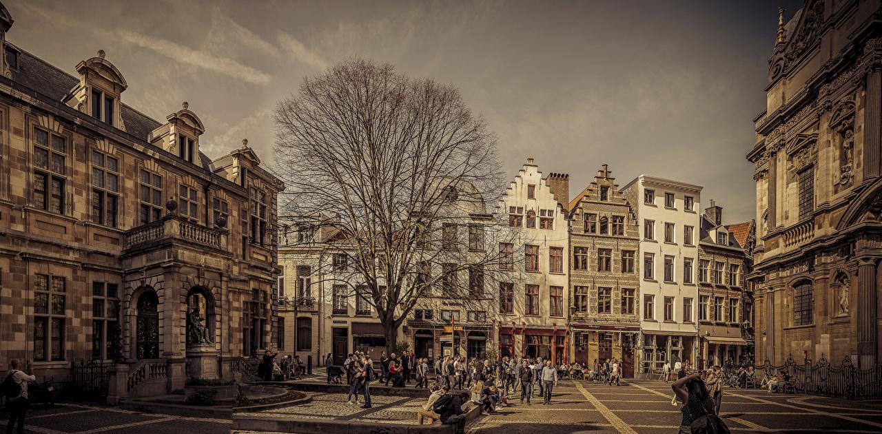 Фотография Бельгия Antwerpen улиц Здания Города улице Улица Дома город