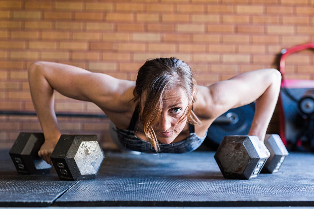 Фотография Девушки отжимается тренируется push-ups Фитнес Гантели спортивные Планка упражнение Руки девушка молодая женщина молодые женщины Отжимание отжимаются Тренировка физическое упражнение Спорт гантеля гантель гантелей гантелями спортивная спортивный рука