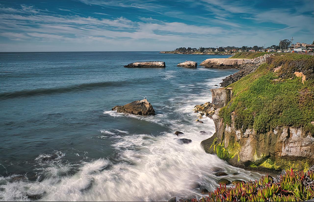 Фотография Калифорния америка Santa Cruz Океан скале Природа Волны Мох Залив калифорнии США штаты Утес скалы Скала мха мхом заливы залива