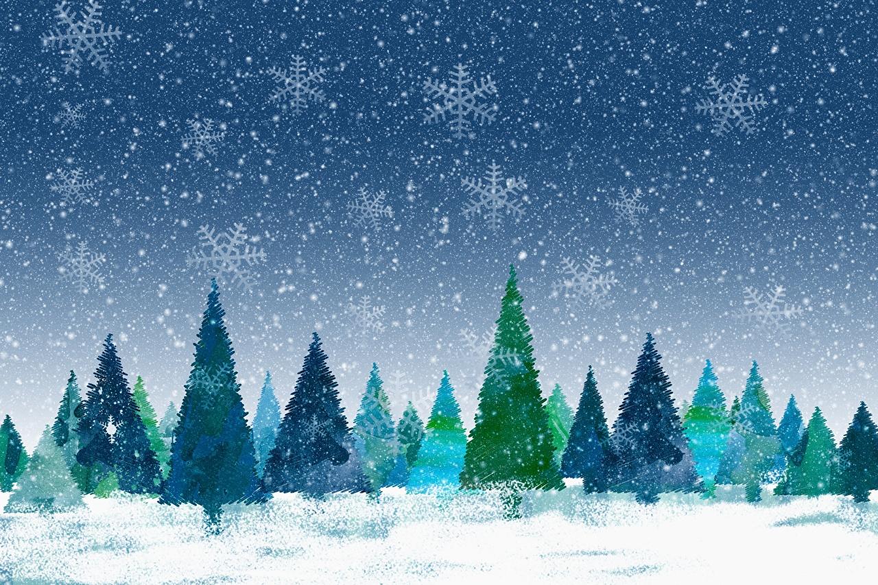Фото Рождество Ель зимние снежинка Новый год ели Зима Снежинки