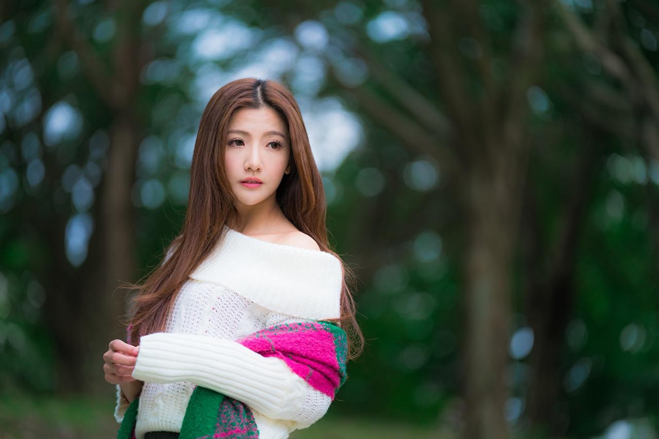Картинка Шатенка Размытый фон девушка Азиаты свитера рука Взгляд шатенки боке Девушки молодая женщина молодые женщины Свитер азиатки азиатка свитере Руки смотрит смотрят
