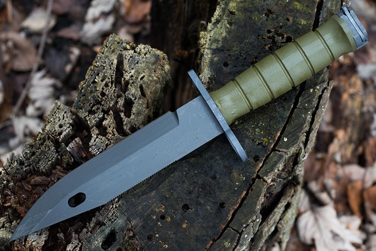 Картинка Нож M9 Bayonet Крупным планом Армия ножик вблизи военные