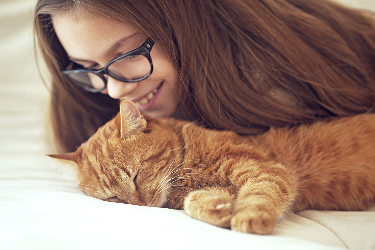 Фотография Девочки Кошки рыжие спящий Животные девочка кот коты кошка сон Спит спят рыжая Рыжий животное
