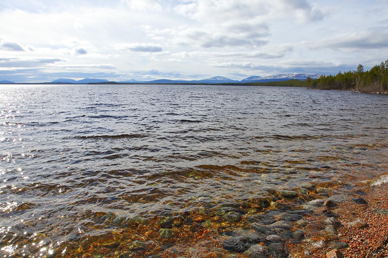Фото Природа Вода Побережье воде берег