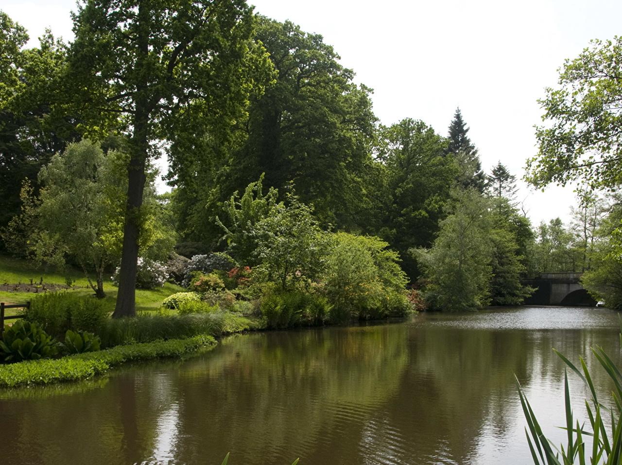 Картинка Природа Реки река речка