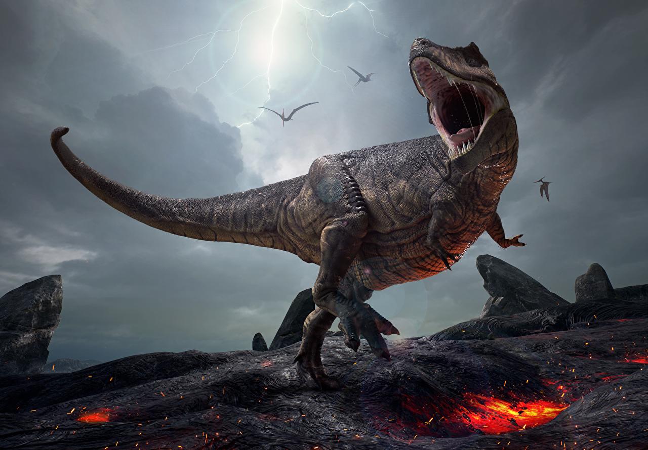 Фотография Тираннозавр рекс Динозавры 3д злость динозавр 3D Графика злой Оскал рычит