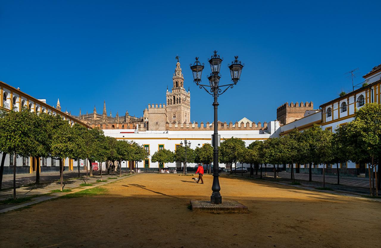 Фото Испания Barrio de Santa Cruz, Sevilla Уличные фонари Дома Города Деревья город Здания дерево дерева деревьев