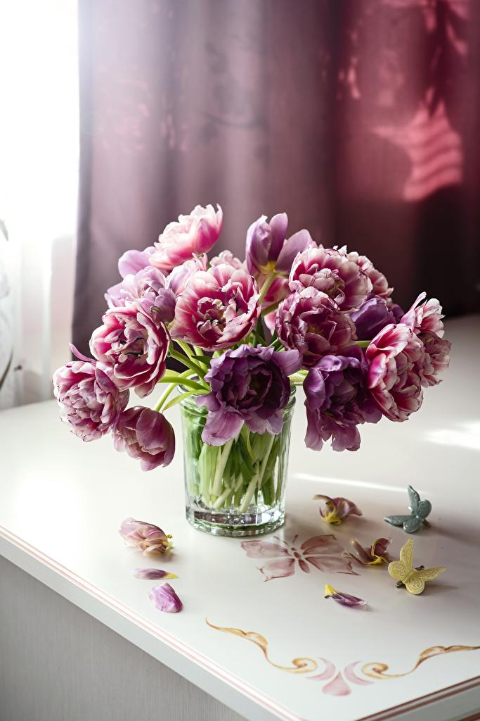 Картинки Бабочки Лепестки Тюльпаны Цветы Стакан бабочка тюльпан лепестков цветок стакана стакане