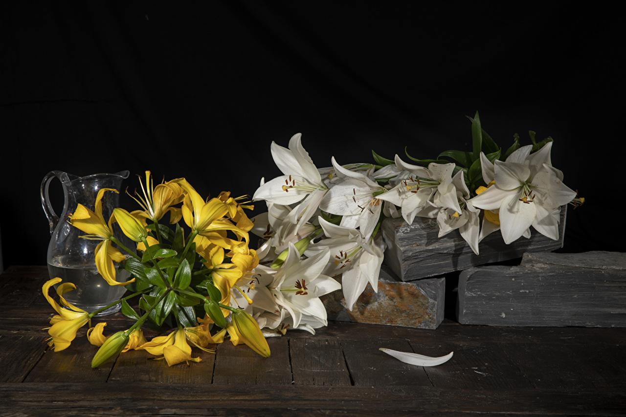 Обои для рабочего стола лилия Цветы Кувшин Лилии цветок кувшины