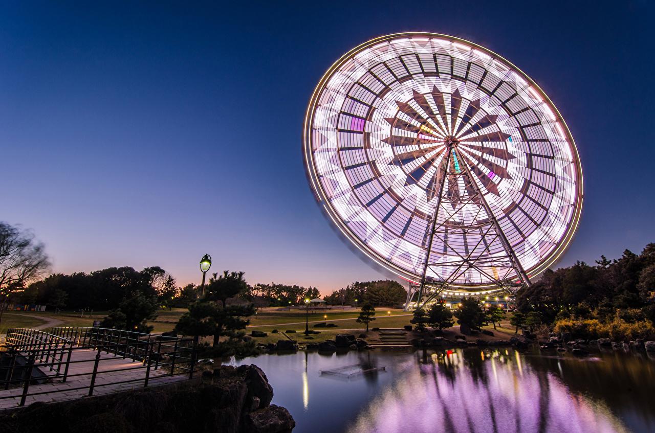 Картинка Токио Япония Колесо обозрения Пруд парк Ночь город колесом обозрения Парки ночью в ночи Ночные Города