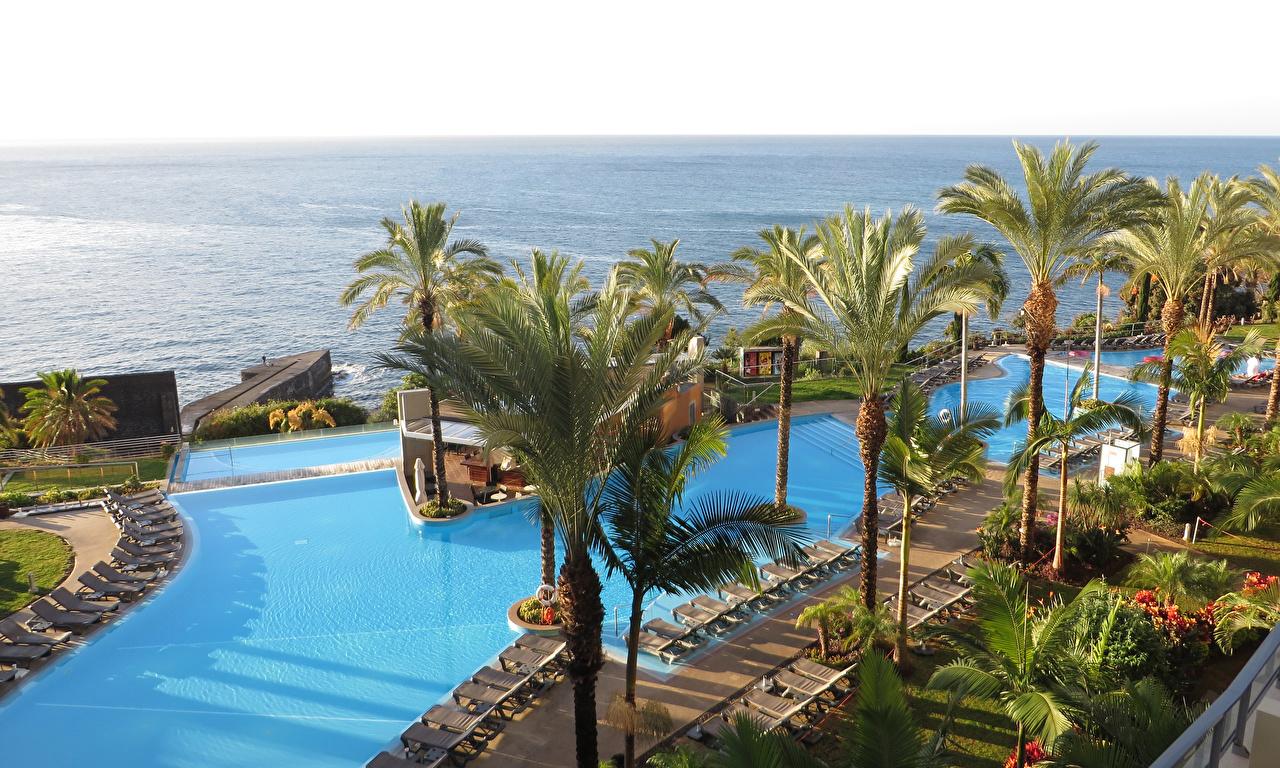 Фото Португалия Курорты Плавательный бассейн Funchal Madeira Islands Природа Пальмы тропический Шезлонг Бассейны пальм пальма Тропики Лежаки