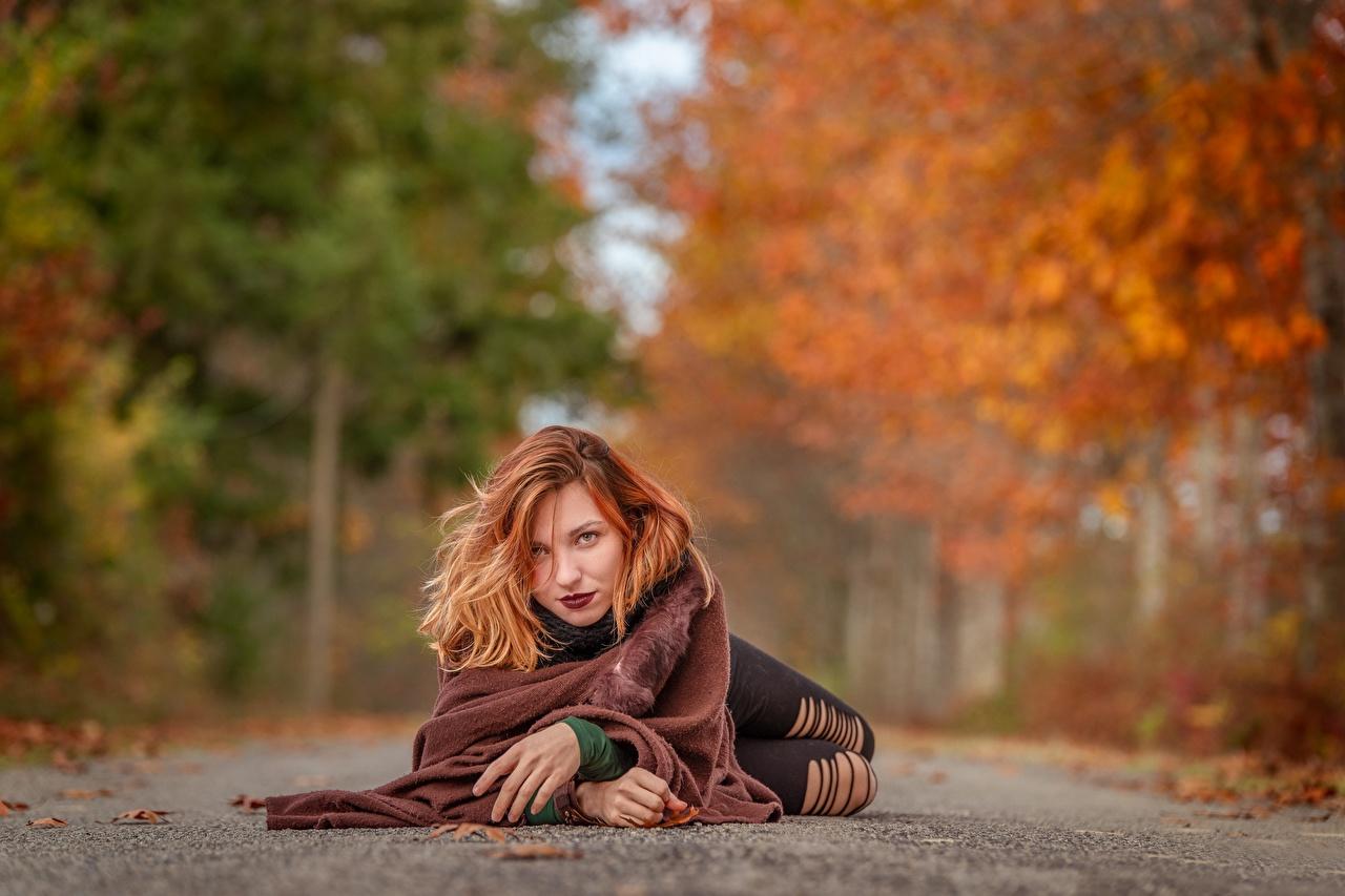 Картинки Рыжая Лежит боке Осень девушка Дороги смотрят рыжих рыжие лежа лежат лежачие Размытый фон осенние Девушки молодые женщины молодая женщина Взгляд смотрит