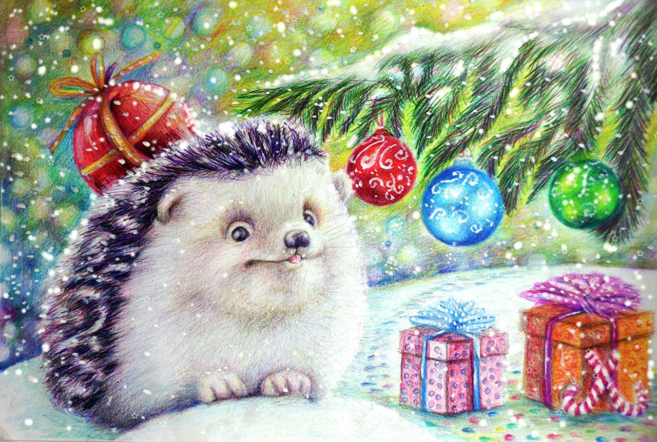 Фотографии Ежики Игрушки Животные Рисованные Ежи игрушка животное