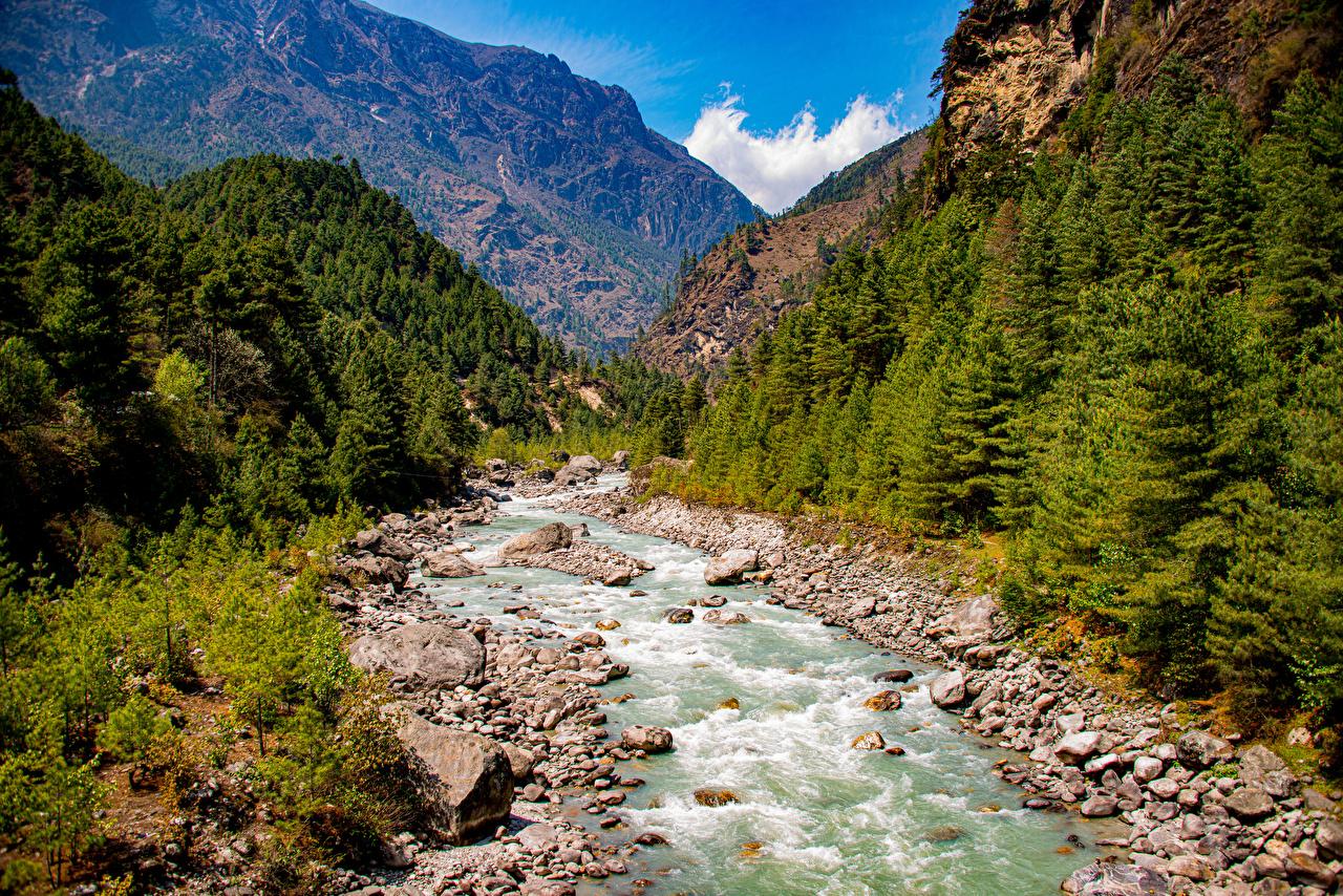 Фотографии Lukla, Nepal Горы Природа Реки Камень дерево гора река речка Камни дерева Деревья деревьев